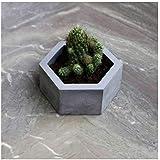Paradox Hexagon Grey Cement Planter/Vase / Flower Pot/Home Decor/Garden Decor (Grey Marble, White Cement)