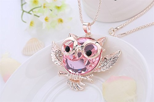 - 41Zxc7qPFuL - Liroyal Owl Bird Animal Pendants Long Chain Necklace