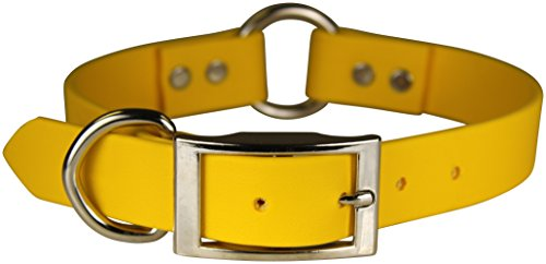 omnipet-zeta-ring-in-center-with-dee-dog-collar-1-x-24-yellow