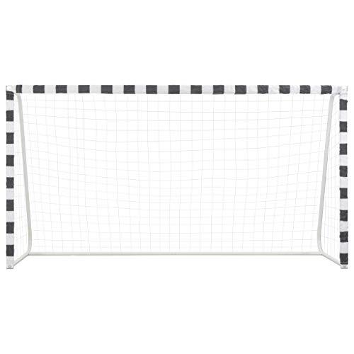 Tidyard Fußballtor Fußballtor-Set Fußball-Tor Torpfosten und Netz für Kinder und Erwachsene 300 x 160 x 90 cm Metall Schwarz und Weiß