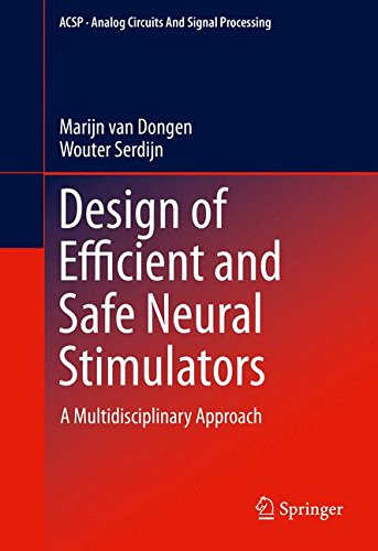 Design of Efficient and Safe Neural Stimulators: A Multidisciplinary Approach (Analog Circuits and Signal Processing)