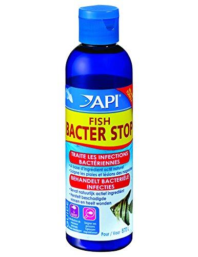 api-hygiene-et-sante-des-poissons-pour-aquariophilie-fish-bacter-stop-118-ml