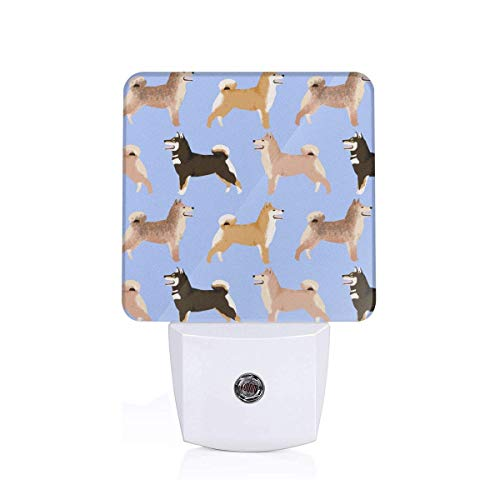 Led Night Light Shiba Inu Dogs Periwinkle Dogs Purple Blue Cute Pet Black And Tan Sesame Dogs Coats Auto Senor Dusk to Dawn Night Light Plug in for Baby, Kids, Children's Adults Room -