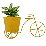 CINAGRO Metal Cycle Desk Planter/Plant Holder, Large (CNG21, Yellow)