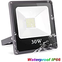 Roleadro Focos Led Exterior 30W Impermeable IP66 Floodlights SMD3030 Proyector LED para Iluminación Jardin 6500K Negro
