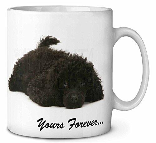 Miniature Schwarzer Pudel ' Yours Forever' Kaffeetasse Geburtstag / Weihnachtsge (Wein Pudel)