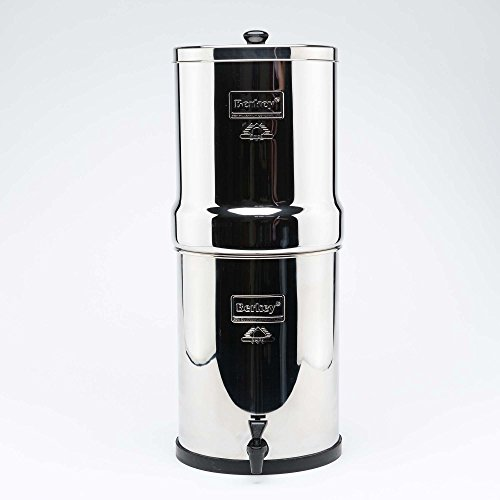 41a%2B0rzu7QL. SS500  - Royal Berkey Water Filter, 4 Black Purifiers Elements With 4 PF-2 Fluoride Filter~Filtration System UK Stainless Steel