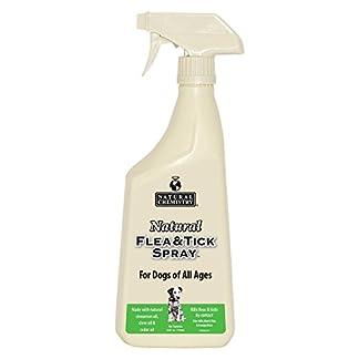 Natural Flea & Tick Spray for Dogs Natural Flea & Tick Spray for Dogs 41a 2BDT1DwPL