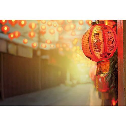 OERJU 3x2m Neujahr Hintergrund Chinesische Stadt Rote Laterne Fotografie Fuwa Paper-Cut Bokeh Halos Hintergrund Feiern Sie das Neue Jahr 2020 Partei Porträt Winterfeier Requisiten