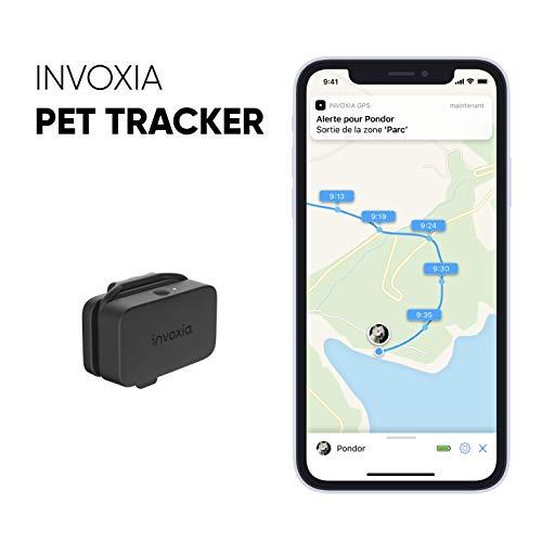 Pet Tracker by Inovoxia : le + léger et le + petit de sa gamme !
