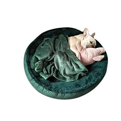 Perrera Extraíble Y Lavable Perros Pequeños Y Medianos Grandes Interiores Alfombras para Mascotas Invierno Cálido Grueso Mordida Resistente A Mordidas. (Color : Verde, tamaño : 85cm)