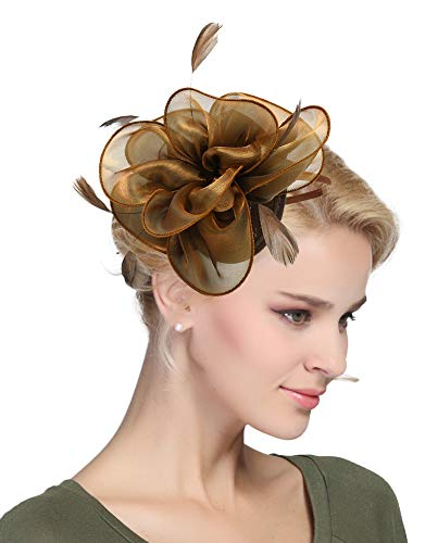 EEVASS Damen Tulle Feather Fascinator Cocktail Hut Haarclip Hochzeit Derby Party (# Kaffee)