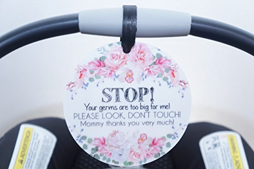 No Touching Your Germs are Too Big for Me Im A Preemie Pink Preemie Chevron Tag That Means Im Extra Small Extra Cute and Extra Sensitive Girl Preemie Car Seat Sign, Stroller Tag