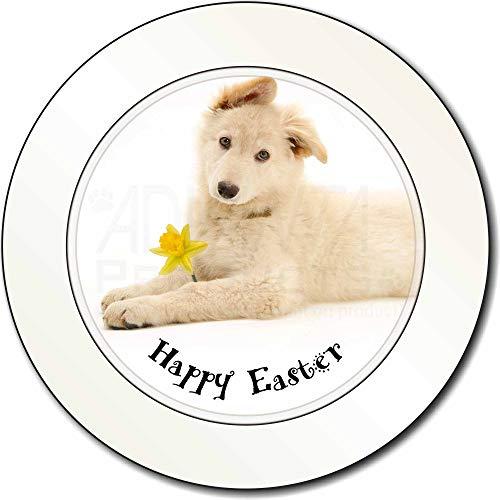 Advanta Group 'Happy Easter' weiß Schaf Auto/Lieferwagen-Halter/Steuerschild Geschenk