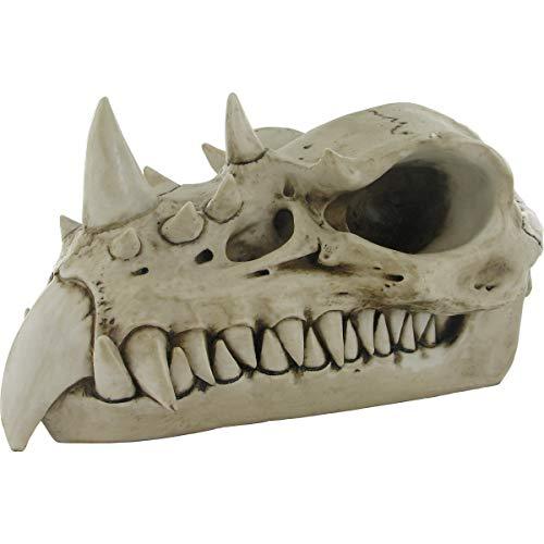 Crâne de Dragon 19 cm