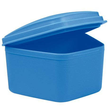 wellsamed Zahnspangendose Spangendose Prothesendose maxi blau 1 Stück
