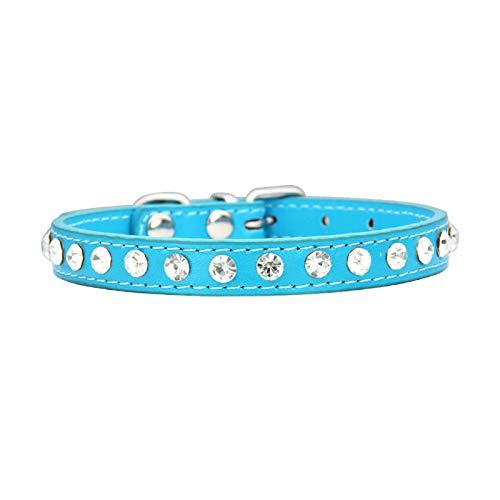 AmDxD PU Leder Hundehalsband Zirkonia Einfarbig Hunde Halsbänder Dressurhalsung Lederhalsband mit Weiß Zirkonia - Schnalle - See Blau M (Unter See Kostüm)