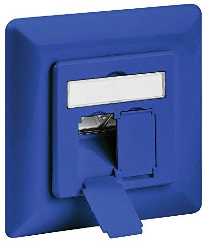 intellinet-cat6-a-della-scatola-da-incasso-contenitore-2-porte-ftp