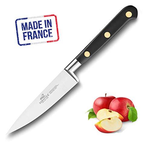 Lion Sabatier 711080 Idéal Couteau d'Office Droit Forgé 10 cm