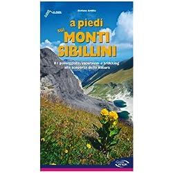A piedi sui monti Sibillini. 81 passeggiate, escursioni e trekking alla scoperta della natura.