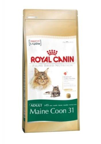 Royal Canin Maine Coon 400 g, Futter, Tierfutter, Katzenfutter trocken (Katzenfutter Frettchen)