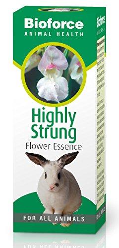 bioforce-animal-essences-highly-strung-30ml