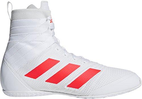 Adidas Speedex 18 Boxeo Zapatillas - AW18-42.7