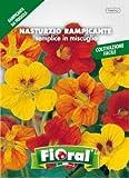 Sementi da fiore di qualità in bustina per uso amatoriale (NASTURZIO RAMPICANTE SEMPLICE IN MISCUGLIO)