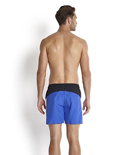 Speedo Sports Splice Short de bain Homme Bleu Marine/Deep Peri/Blanc