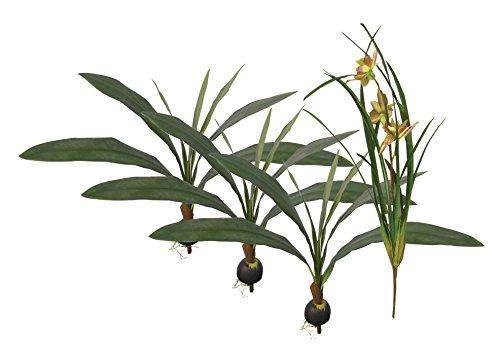 Namiba Terra 6920 Terrarienpflanzen Set Java, 4 künstlicher Regenwaldpflanzen im Set