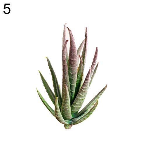 MoO1deer 1 Stück künstliche Blume Mini Sukkulente Pflanze Hochzeit Party Home Schreibtisch Bonsai, für Zuhause Garten Party Hochzeit Dekoration 5# (Bareback Mini)