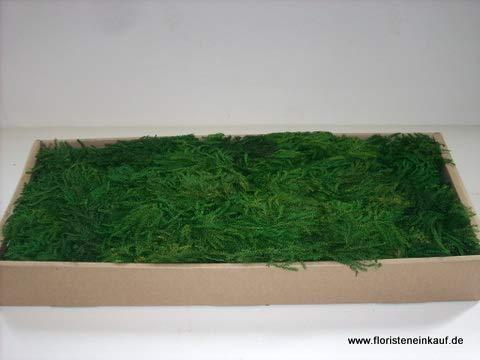 Erika Moos 850g, grün