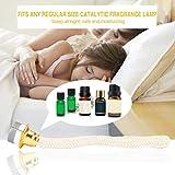 Odeur d'Aromatherapy de diffuseur de brûleur catalytique de mèche de lampe à huile de parfum de rechange enlevant/déshumidification