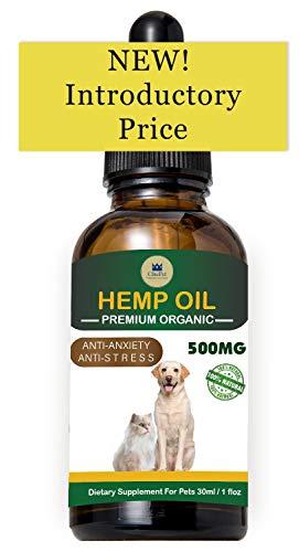 ChicPet UK Aceite de cáñamo con Espectro Completo orgánico para Perros, Gatos y Mascotas (lo Mejor para la ansiedad, el Alivio del Dolor, la recuperación, Mejora articulaciones) 30 ml (500 MG)