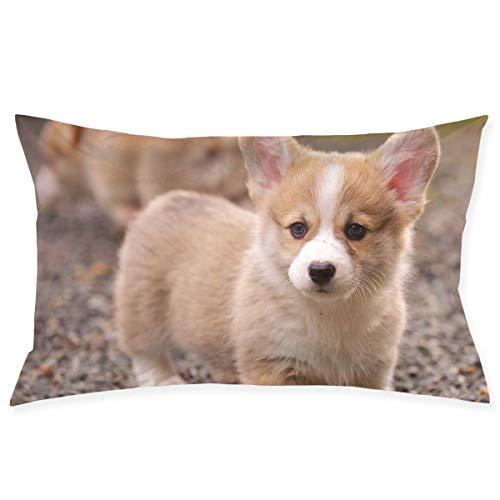 Jxrodekz Entzückender Corgi Dog Pattern Kissenbezug Microfiber Schlafzimmer Wurfkissenbezug mit Reißverschluss 20x30 Zoll Größe