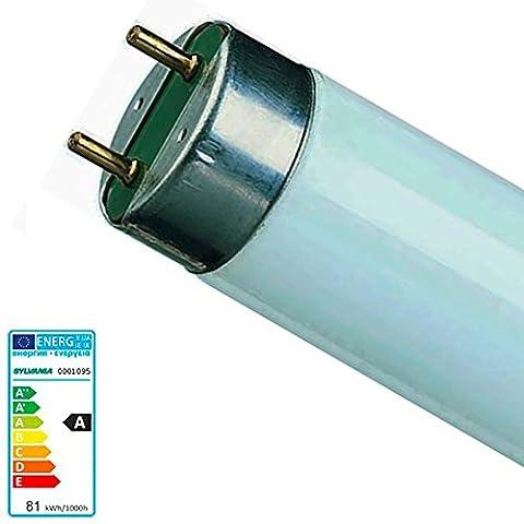 Sylvania Fluorescent Lighting T8 Fluoresent Tube 70w G13 Daylight 12000 Hours