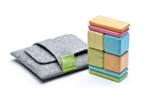 tegu-a-10-012-sjg-tints-magnetic-wooden-block-pack-of-8