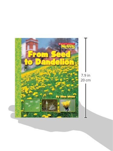 From Seed to Dandelion (Scholastic News Nonfiction Readers: How Things Grow)