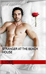 Stranger at the beach house (English Edition)