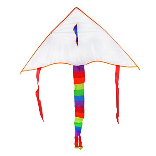 cometa-juega-al-aire-libre-parque-de-la-playa-colorido-nios-adultos-de-color-al-azar-1