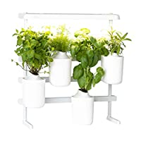 Prêt à Pousser Modulo, your versatile Indoor Garden Grow your own fresh herbs at home, easy and all year round ❃ Including Basil, Mint, Chives and Thyme