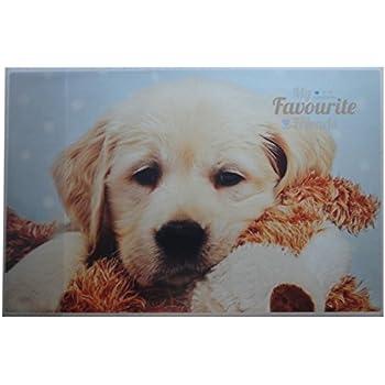 Idena 14015 Sous-main en plastique avec 2 poches plaqu/ées Multicolore 68 x 44 cm chien Version Allemande