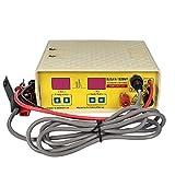 BAOSHISHAN Electro Fisher Ultrasonic Inverter Equipo de pesca de pulso eléctrico Máquina de pesca de pulso Shocker Stunner (1020NP)
