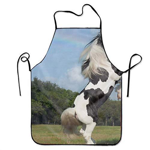 LarissaHi Zigeuner Vanner Pferd Regenbogen großes Hauptgeschenk für Küche BBQ-Koch-Kochs-Schutzblech, das professionelle Erwachsen-Schellfisch-Geschenke kocht -