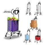 FLM Einkaufstrolley mit Treppensteiger - Einkaufswagen mit Abnehmbarer Tasche, Tragkraft 80 KG