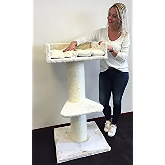 Cat tree for large cats Maine Coon Lounge Beige XXL extra big breed scratch post and adult towers furniture scratcher activity centre 41a6FpWkVXL