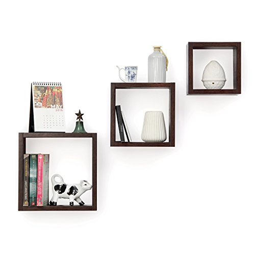 Forzza Kate Wall Shelf, Set of 3 (Matte Finish, Wenge)