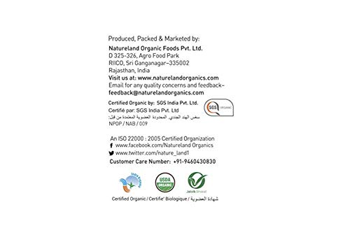 Natureland Organics Fennel (Saunf) 100 gm - Organic Saunf