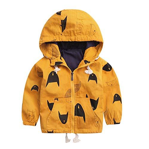 Quan Herbst Jacke Kinder Katon Reißverschluss Mit Kapuze Baby Oberbekleidung Mantel Jungen Mädchen Kinder Kleidung beiläufig warm Niedlich Party weich Mantel Sweatshirt Windjacke