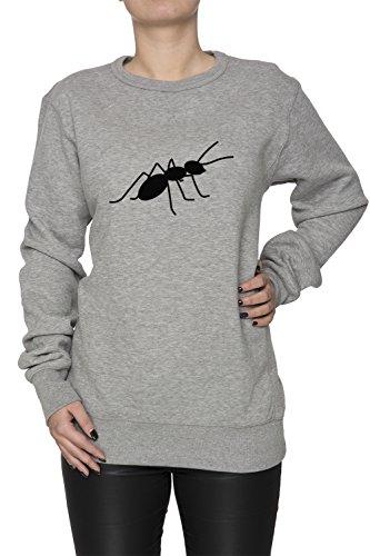 Fourmi Gris Coton Femme Sweat-shirt Jersey Pull-over Grey Women's Sweatshirt Pullover Jumper